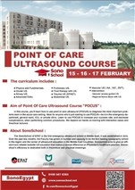 Point of Care Ultrasound Course    Egypt